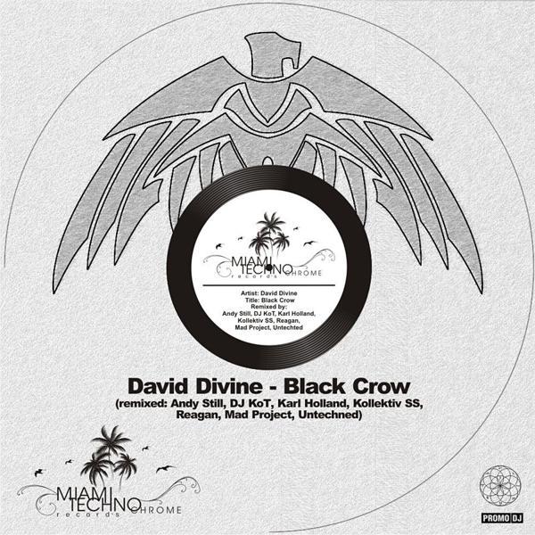 David Divine - Black Crow (Remix-pack)